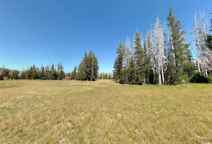 Three-sisters-wilderness-broken-top-loop-park-meadows-2