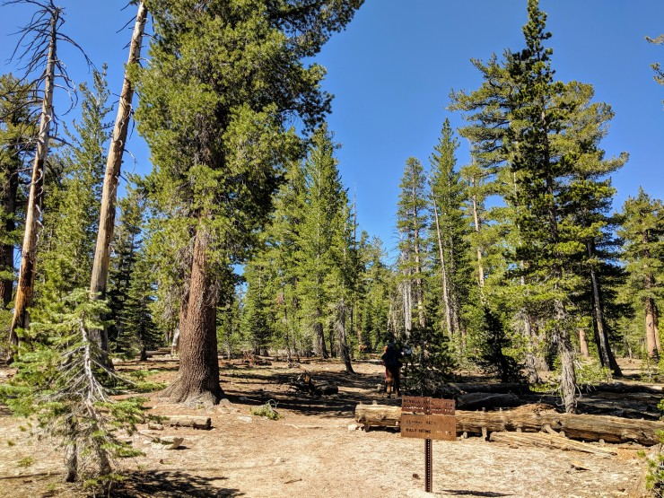 yosemite-backpacking-clouds-rest-trail-junction-with-forsyth-trail