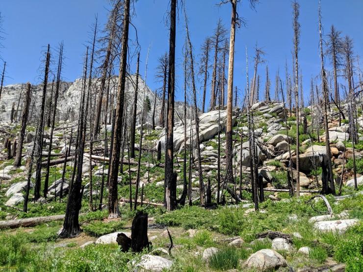 yosemite-backpacking-john-muir-trail-burned-view
