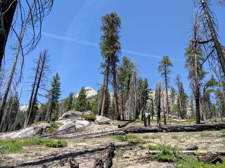 yosemite-backpacking-john-muir-trail-towards-high-trail