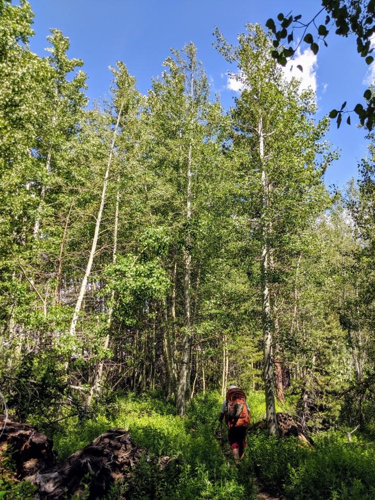yosemite-backpacking-merced-high-trail-between-lakes
