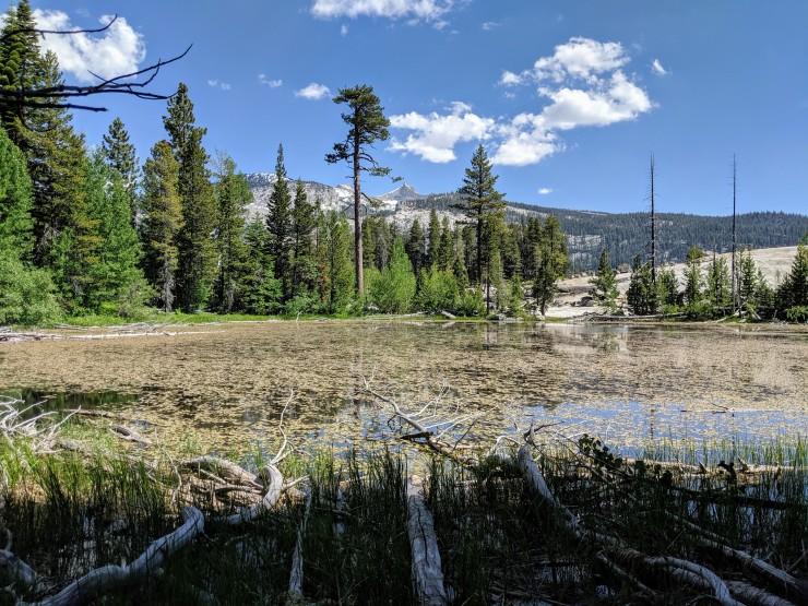 yosemite-backpacking-merced-high-trail-first-lake-bluff