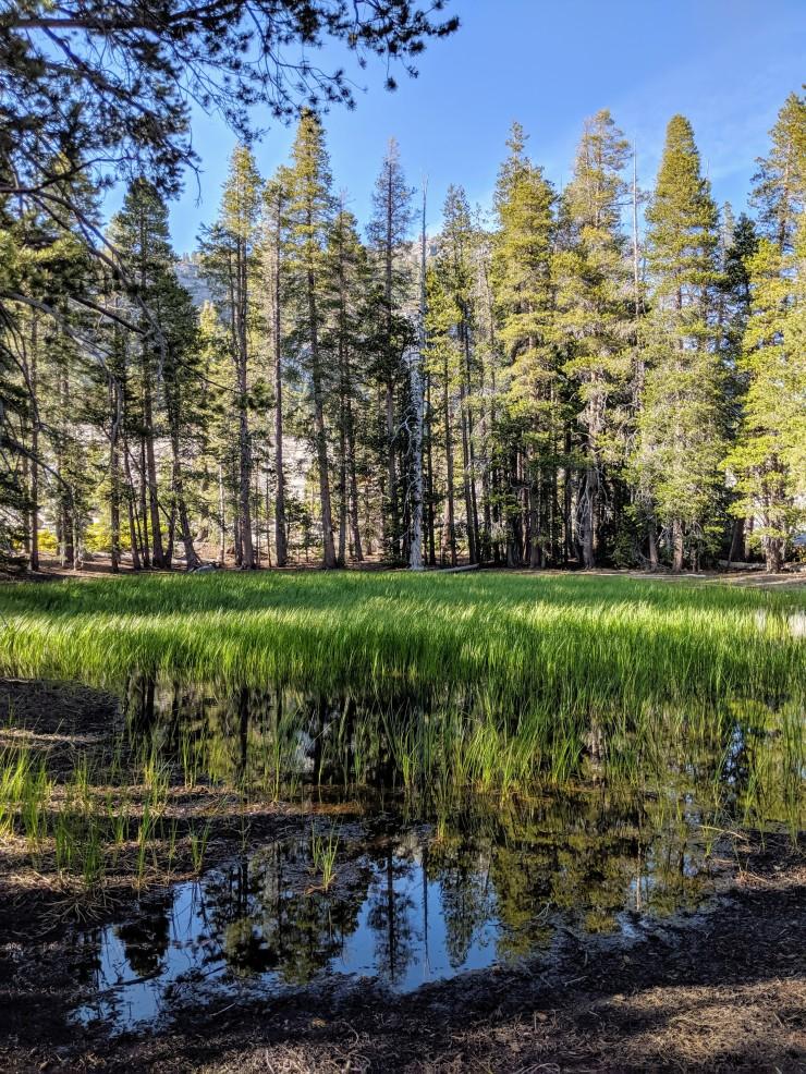 yosemite-backpacking-merced-high-trail-second-lake