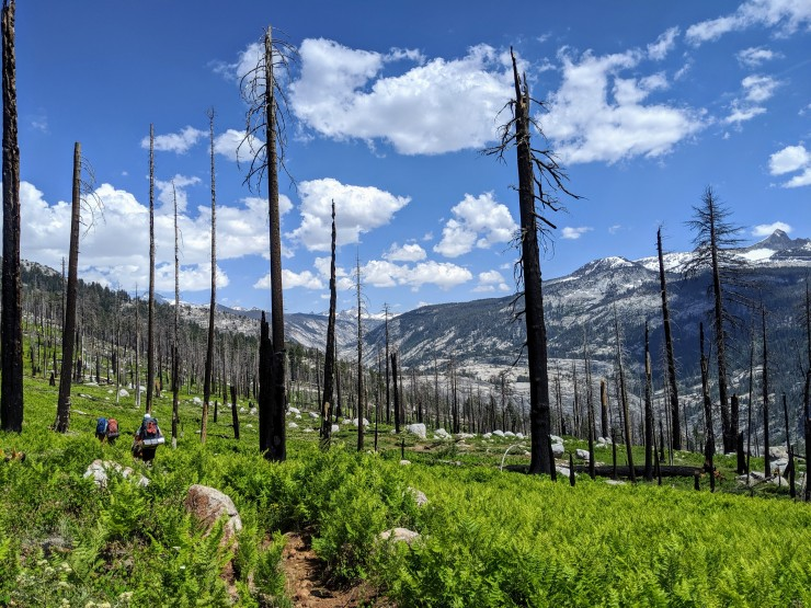 yosemite-backpacking-merced-high-trail-views-open-up