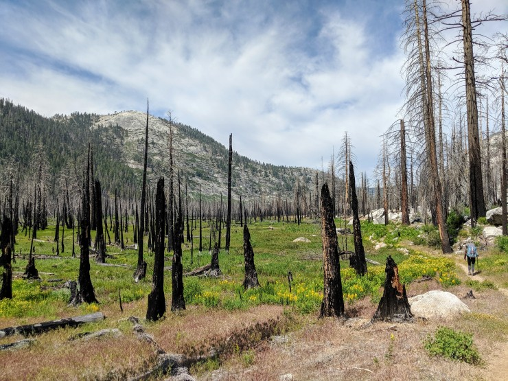 yosemite-backpacking-merced-lake-trail-little-yosemite-valley