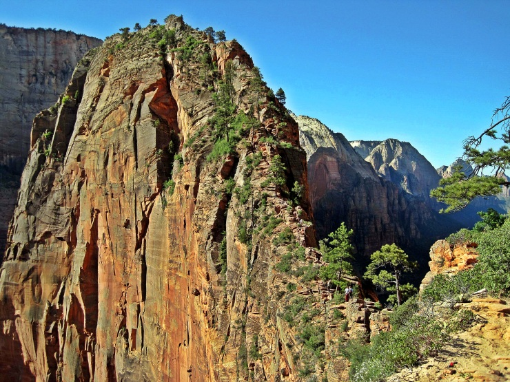 angels-landing-scout-lookout.jpg