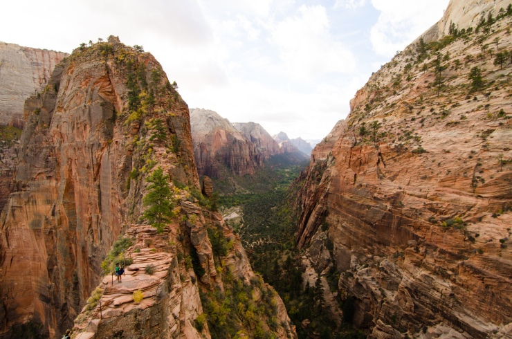 Trail up to Angel's Landing