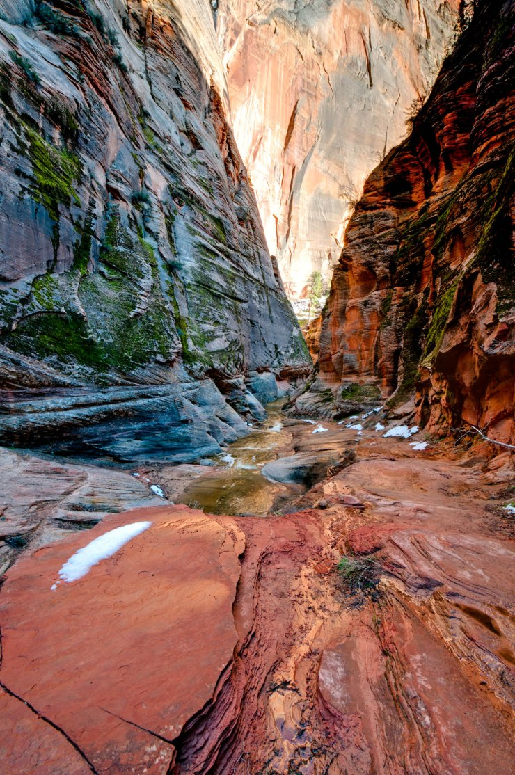 On the trail up Echo Canyon in Zion National Park, Utah
