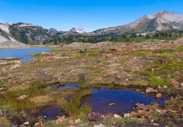 glacier-peak-wilderness-19-upper-lyman-lakes
