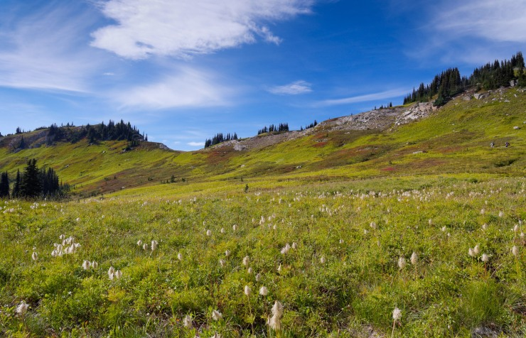 glacier-peak-wilderness-29-approach-cloudy-pass