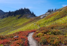 The trail leading from Cloudy Pass to Suiattle Pass (credit: John Strother)