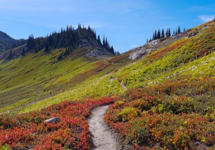 glacier-peak-wilderness-31-cloudy-pass-trail