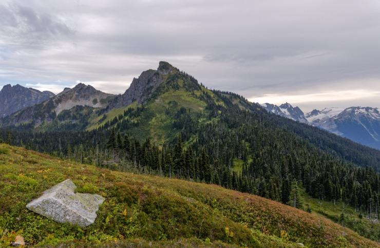 glacier-peak-wilderness-49-liberty-cap-from-buck-creek