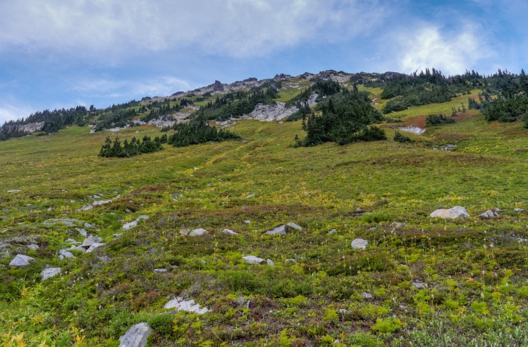 glacier-peak-wilderness-51-buck-creek-pass