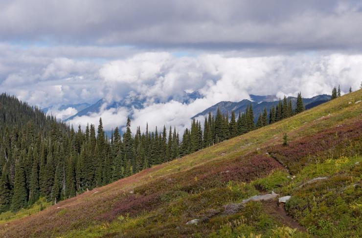 glacier-peak-wilderness-52-buck-creek-pass