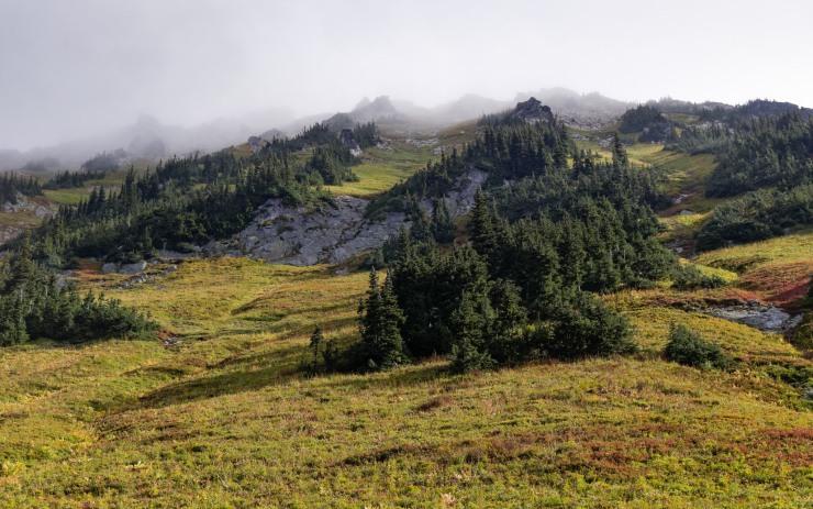 glacier-peak-wilderness-53-buck-creek-pass