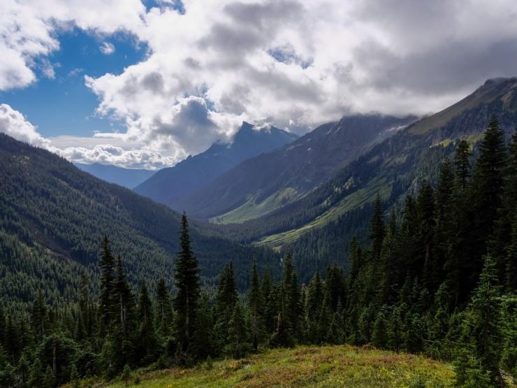 glacier-peak-wilderness-54-buck-creek-valley