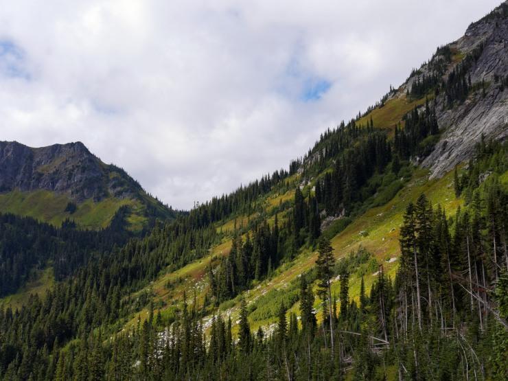 glacier-peak-wilderness-55-hiking-down-from-buck-creek-pass
