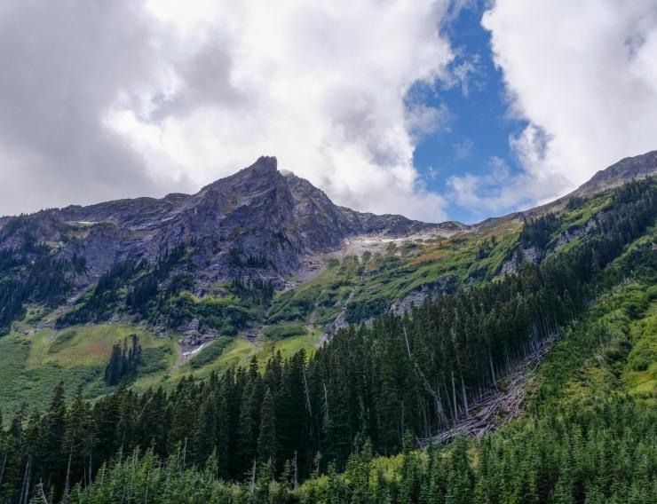 glacier-peak-wilderness-57-down-from-buck-creek-ass