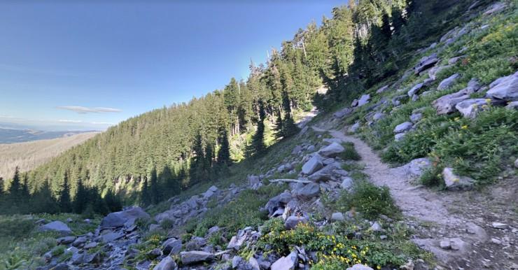 compass-creek-timberline