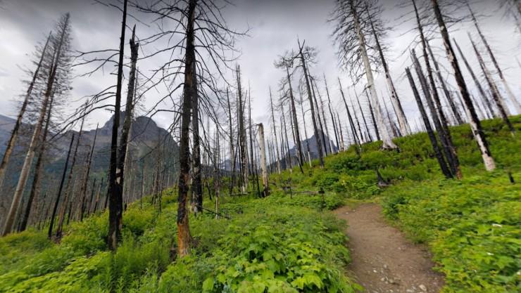 glacier-gunsight-piegan-pass-trail