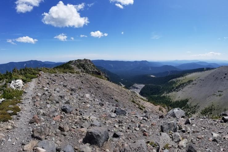 gnarl-ridge--newton-creek_48564838072_o