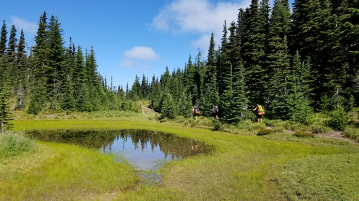 heading-out-of-mcgee-creek-camp_48564886747_o