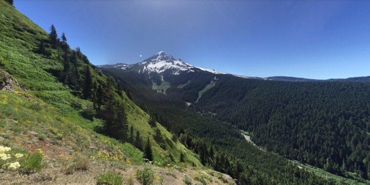 mt-hood-from-bald-mt