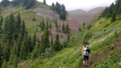 Hiking along the Paradise Park Trail