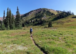View along the Deer Park Loop, between Lost Pass and Cameron Pass (credit: John Strother)