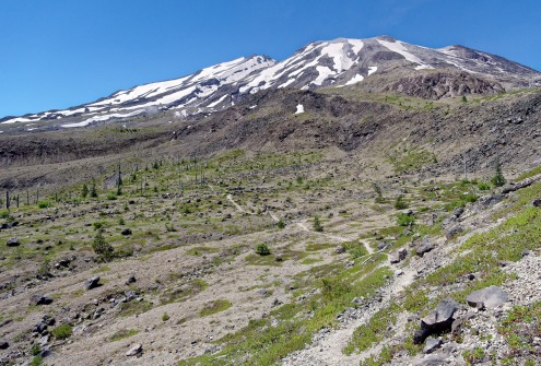 Loowit Trail as it traverse along the southeast face of Mount St. Helens (credit: John Strother)
